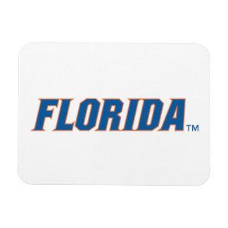 La Florida - azul y naranja Imanes Rectangulares
