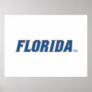 La Florida - azul y naranja Poster