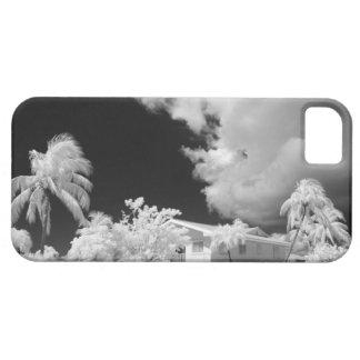 La Florida cierra la casa y sus palmeras, los iPhone 5 Carcasa