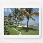La Florida cierra la playa americana - ReasonerSto Tapetes De Raton