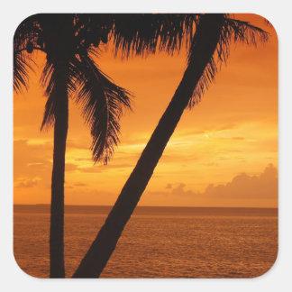 La Florida cierra puesta del sol Pegatina Cuadrada