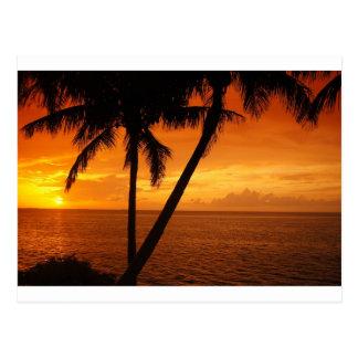 La Florida cierra puesta del sol Tarjeta Postal