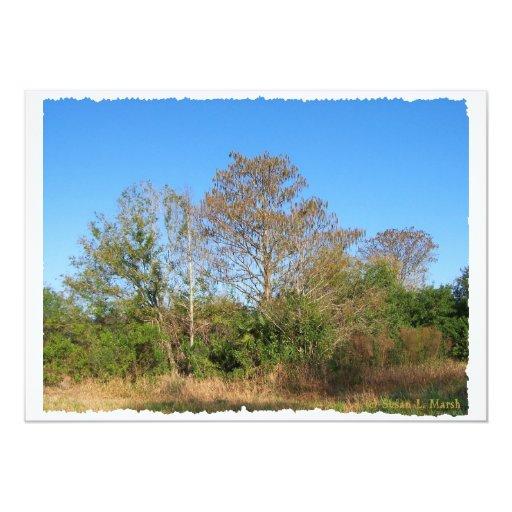 La Florida Cypress calvo en un rancho cenagoso Invitacion Personal