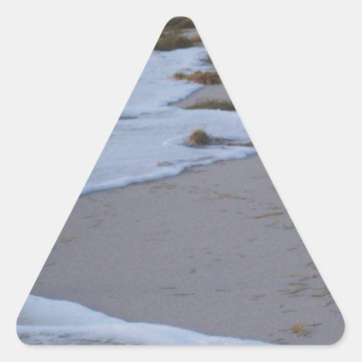 La Florida Pegatina Triangular