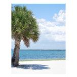 La Florida - playa tranquila Plantilla De Membrete