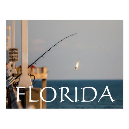 LA FLORIDA POSTAL