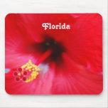 La Florida Tapete De Raton