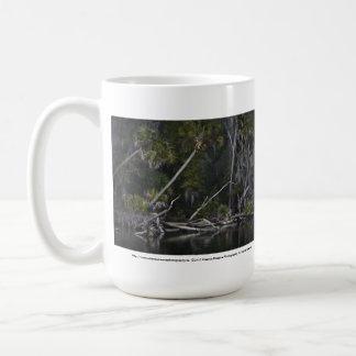 La Florida tropical Taza De Café