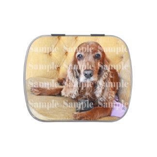 La foto conmemorativa del mascota PERSONALIZA Latas De Caramelos