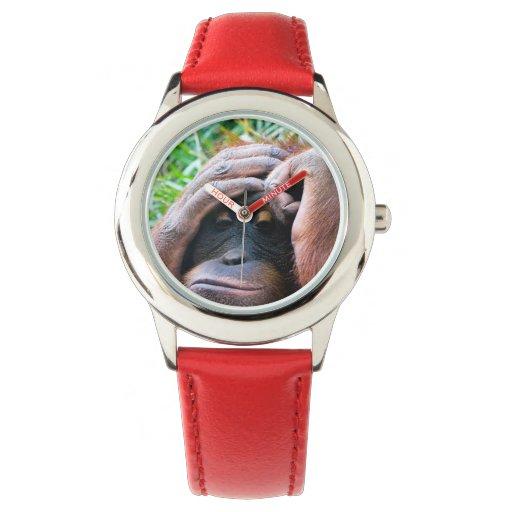 La foto del orangután embroma el reloj del mono