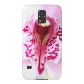 La foto gráfica del iris elegante de la orquídea o carcasa de galaxy s5