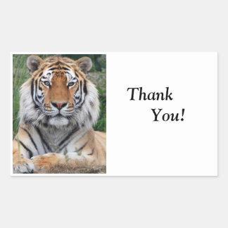La foto hermosa principal del tigre le agradece pegatina rectangular