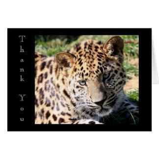 La foto linda del cachorro del leopardo del bebé l tarjetas