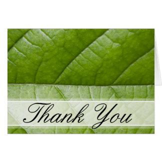 La foto macra de la hoja verde le agradece tarjeta pequeña