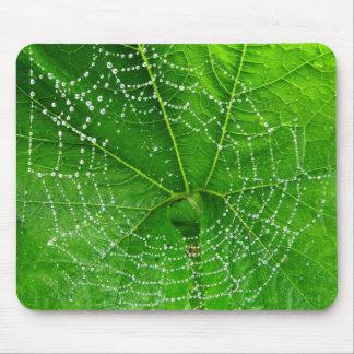 La foto única del Web de arañas diseñó el Mouse Pad