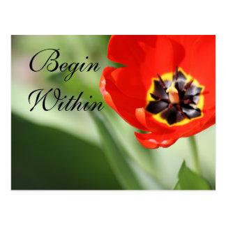 La fotografía interna del tulipán postal
