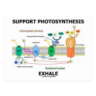 La fotosíntesis de la ayuda exhala (ambiental) postal