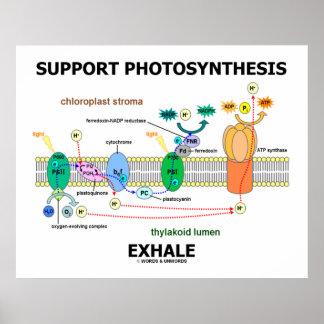 La fotosíntesis de la ayuda exhala dependiente de posters