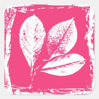 La frambuesa deja el grabar en madera en rosa de pegatina cuadrada