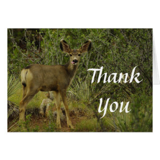 La frambuesa del ciervo mula le agradece cardar tarjeta de felicitación