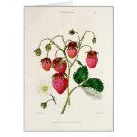 La fresa de Roseberry, grabada por Watte Tarjeta De Felicitación