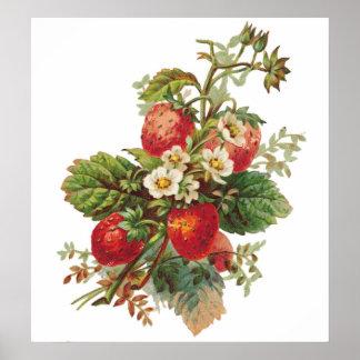 La fresa florece poster adaptable