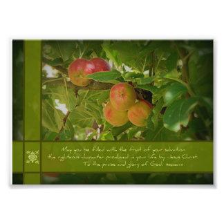 La fruta de sus manzanas 5x7 de la salvación foto