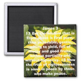 la fruta del girasol del verso de la biblia de la  imán cuadrado