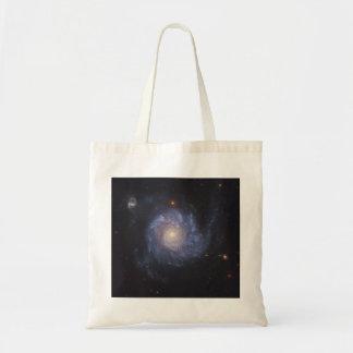 La galaxia 101 NGC más sucios 5457 del molinillo d Bolsa