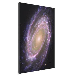 La galaxia Bode's Lienzo Envuelto Para Galerias