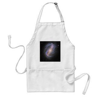 La galaxia espiral barrada NGC 6217 Delantal