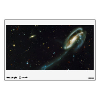 La galaxia UGC 10214 del Tadpole Vinilo