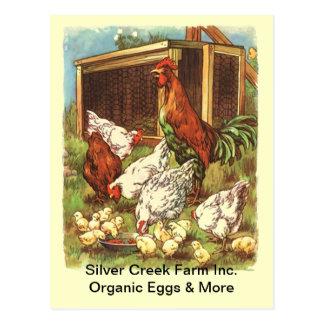 La gama libre orgánica Eggs la POSTAL del mercado