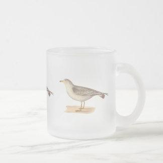 La gaviota americana común(zonorhyncus del Larus) Tazas De Café