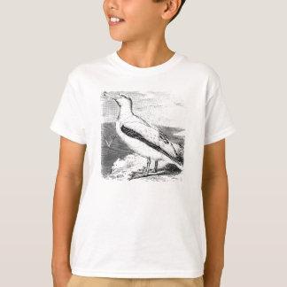 La gaviota de la gaviota del albatros del vintage playera