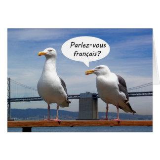 La gaviota habla francés felicitaciones
