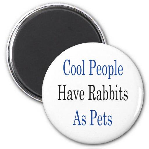 La gente fresca tiene conejos como mascotas imanes de nevera