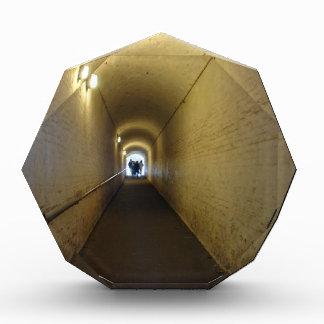 La gente que camina abajo del túnel en Dover se