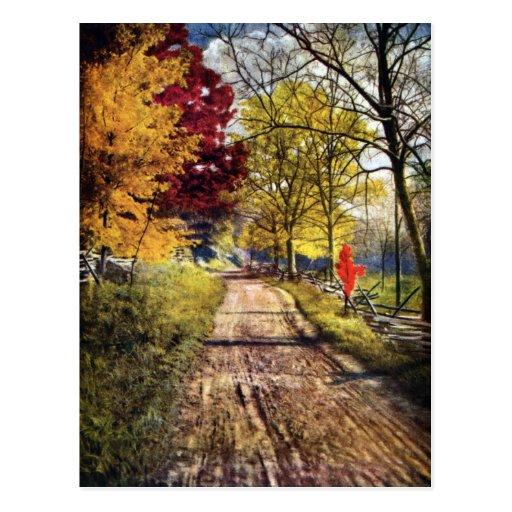 La gloria de los árboles del otoño tarjeta postal