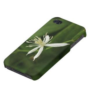 La glorieta de la Virgen iPhone 4 Fundas