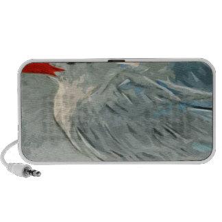 La golondrina de mar real en invierno colorea impr altavoz