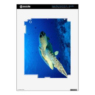 La gran barrera de coral, Australia 2 Pegatina Skin Para iPad 3