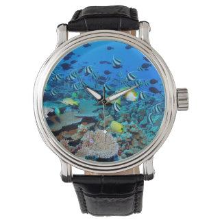 La gran barrera de coral reloj