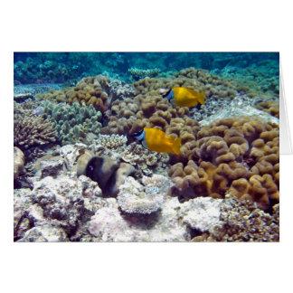 La gran barrera de coral tarjeta de felicitación