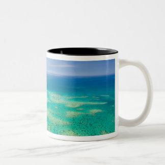 La gran barrera de coral, vista aérea del verde 2 taza de café de dos colores