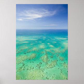 La gran barrera de coral, vista aérea del verde poster