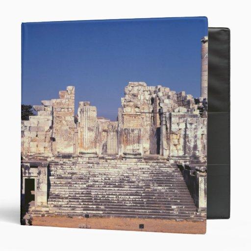 La gran escalera del templo de Apolo