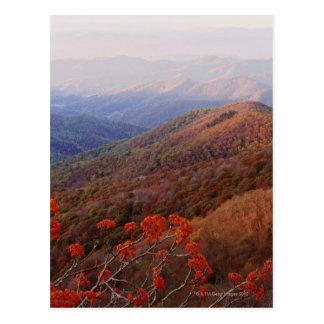 La gran montaña ahumada NP extiende del norte Tarjeta Postal