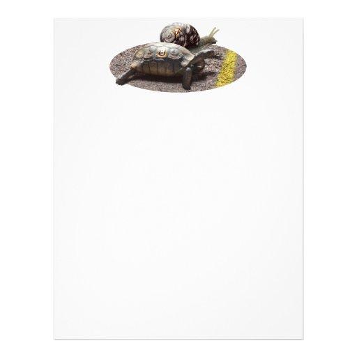 La gran raza de la tortuga y del caracol tarjetas informativas