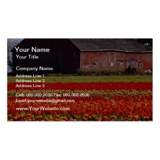 La granja roja del tulipán, el Monte Vernon, Tarjetas De Visita